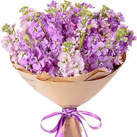 Букет из фиолетовых матиол