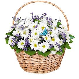 Букет из кустовых белых хризантем
