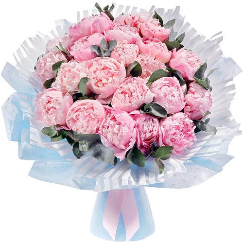 Голландские Розовые Пионы