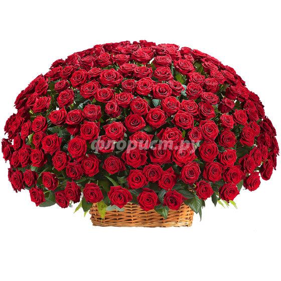 "Корзина ""251 Красная Роза"""
