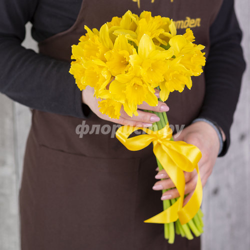 Жёлтые Нарциссы