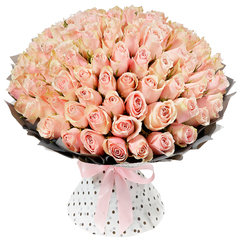 101 Нежная Роза