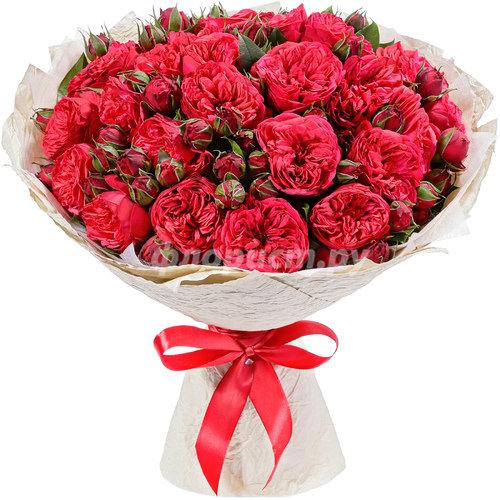 Французские Пионовидные Розы