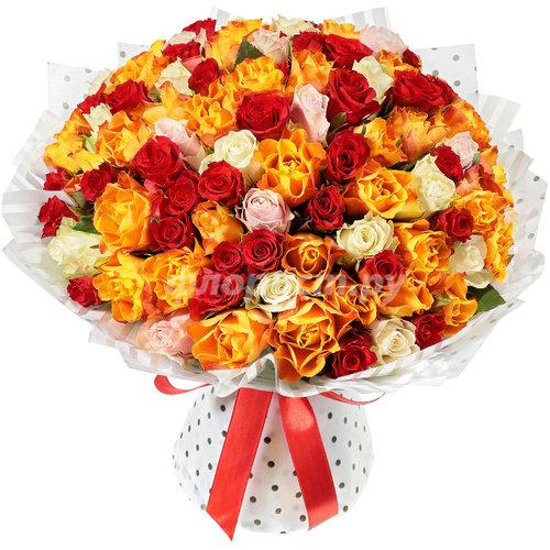 101 Красочная Роза