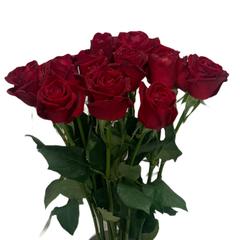 Монобукет из красных роз 80 см
