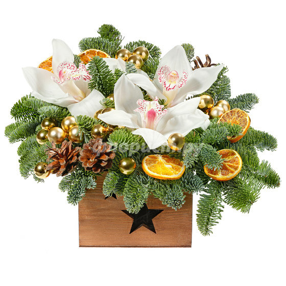 Позолота Рождества