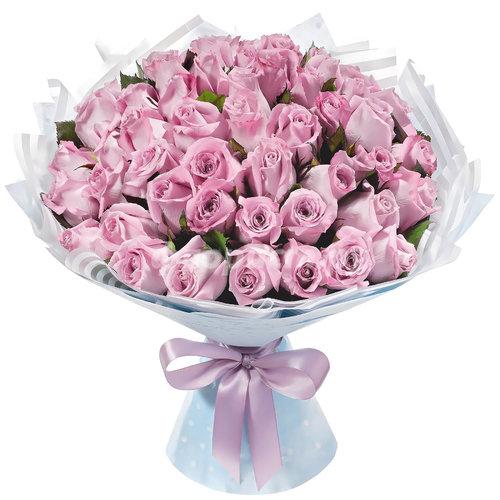 51 Лиловая Роза