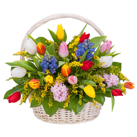 Корзина «Актриса Весна»
