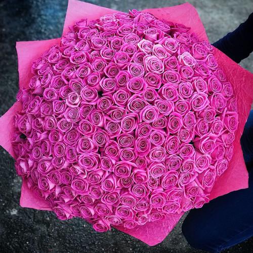 Потрясающий букет из 201 розы