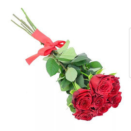 7 красных роз на ленте