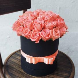 Розы в коробке «Pafos»