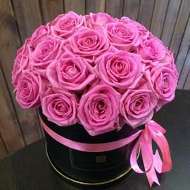 Розовое восхищение