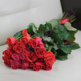 15 коралловых роз Вау 60 см