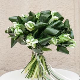 Букет Зеленые тюльпаны