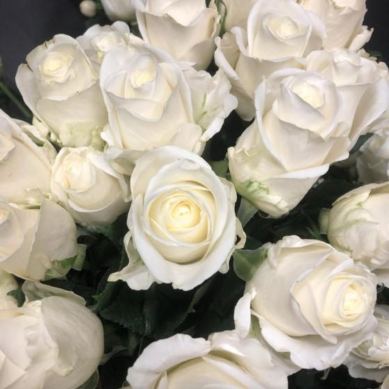 25 роз Вендела