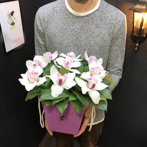 Королева Орхидей