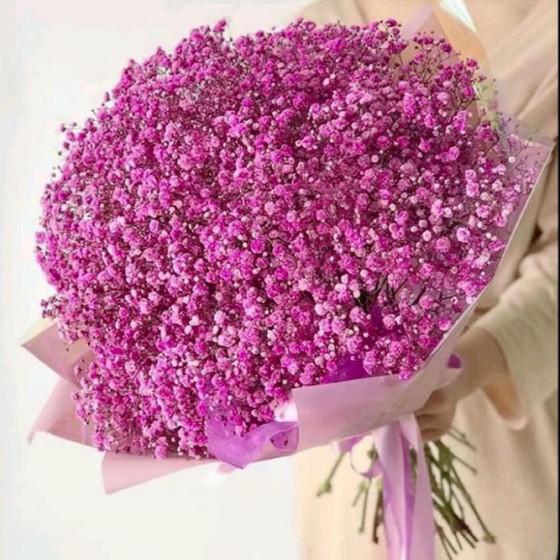 Букет из шикарных свежих  гипсофил розовых