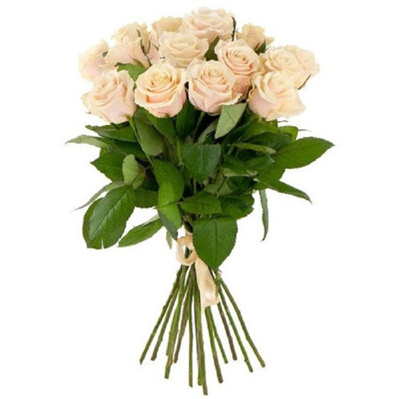 Роза талея 60 см 15 шт. в крафте