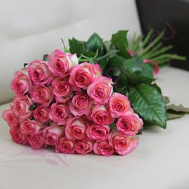 25 розовых роз Джумилия 60 см