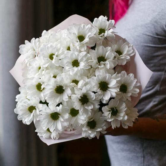 5 кустовых хризантем