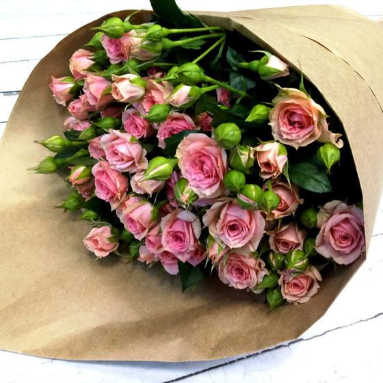 Роза кустовая Грация 50 см, 11 шт.