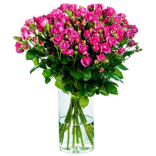 15 кустовых малиновых роз