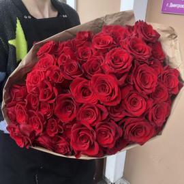 51 роза бордо