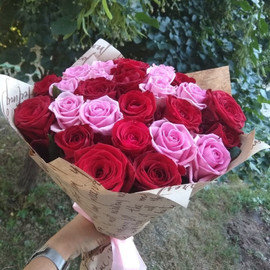 25 розово-красных роз