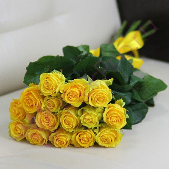 15 желтых роз Пени Лейн 60 см