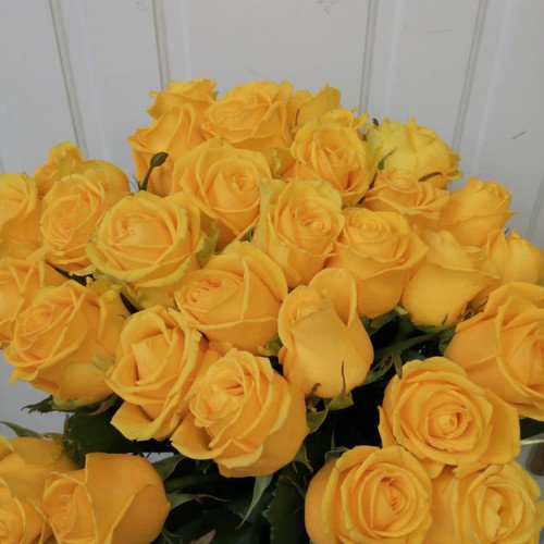 Букет из 35 желтых роз