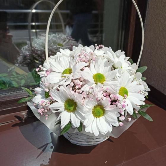 Белая хризантема в корзине