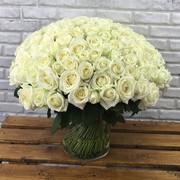 """Букет """"201 белая роза 50 см"""""""
