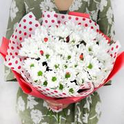 Букет из белой хризантемы с божьми коровками