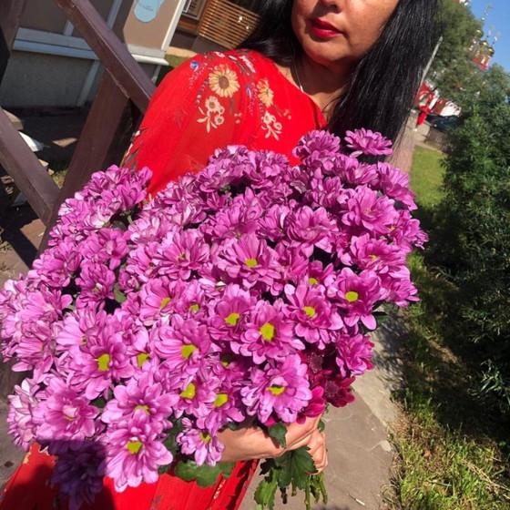 Букет розовых хризантем