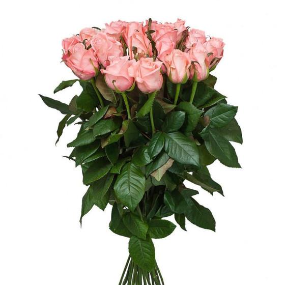 Роза Карина 60 см 25 шт.