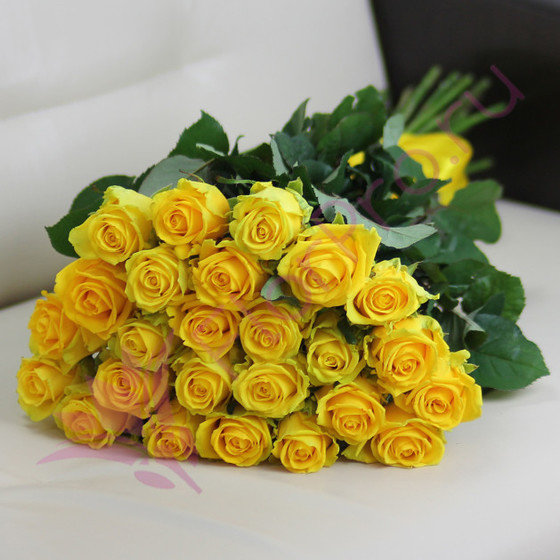 25 желтых роз Пени Лейн 60 см