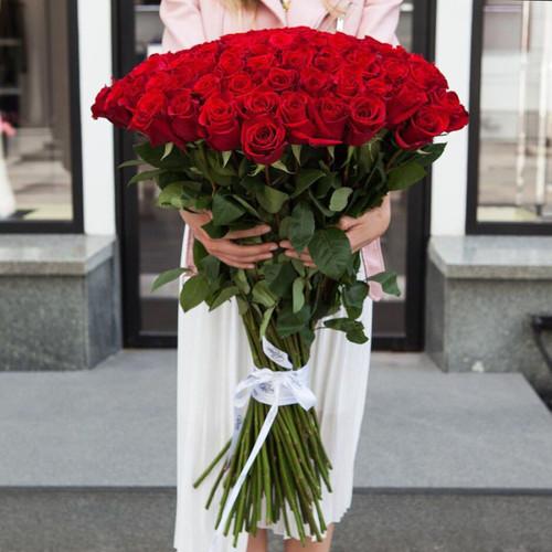 Букет алых роз Фридом 101 шт