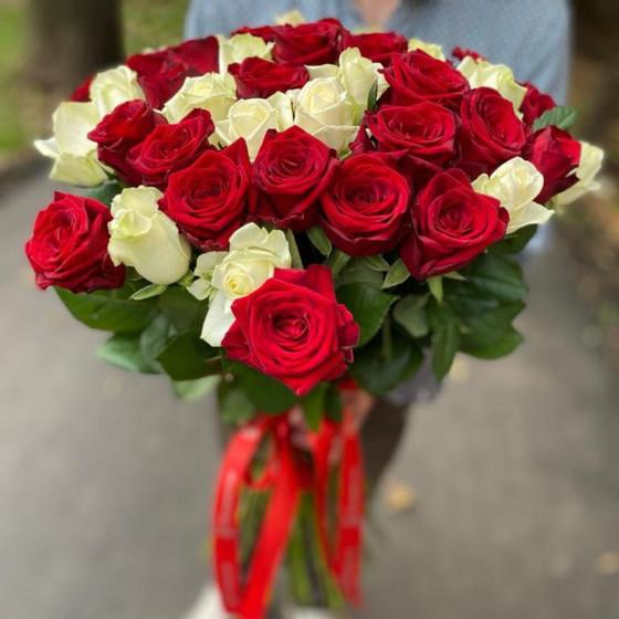 51 Роза Красно-Белое