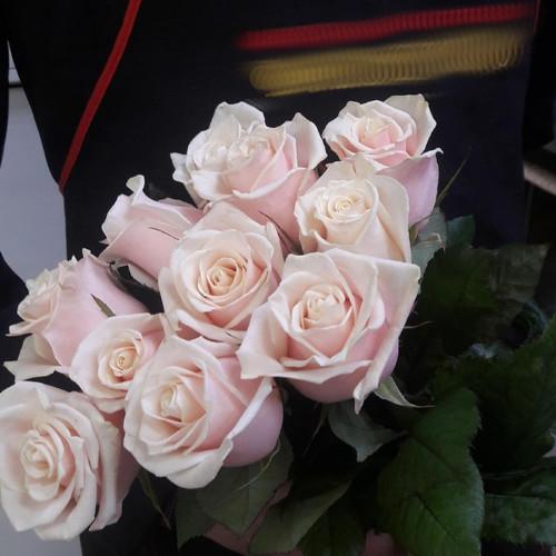 Букет из 11 чайных роз
