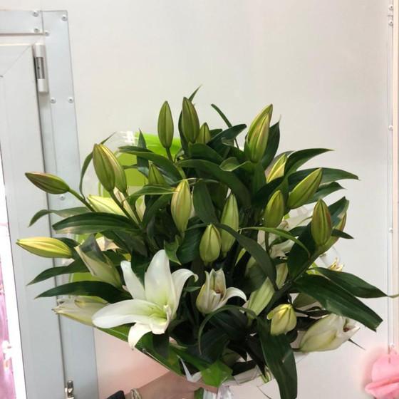 Лилия восточная