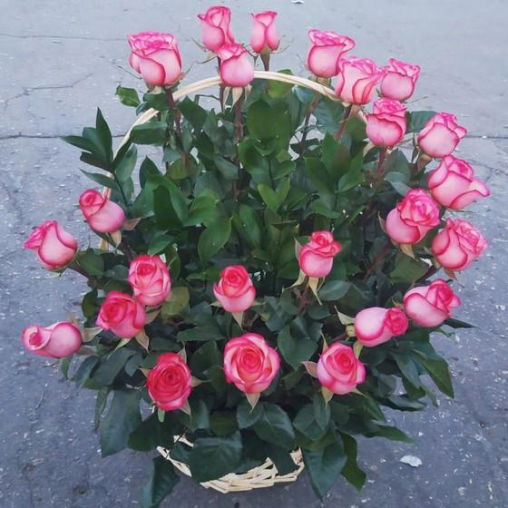 Корзина 25 роз