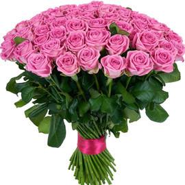 Роза Аква 60 см в крафте 51 шт.