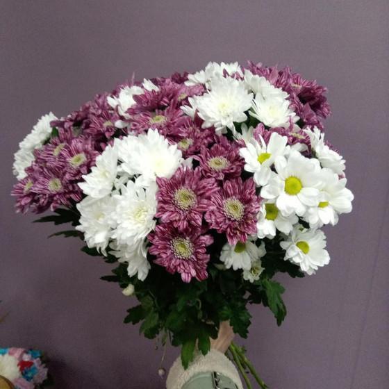 Букет микс 15 кустовых хризантем