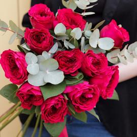 Пионовидные розы сорта David Austin