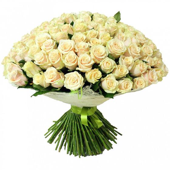 Роза талея 60 см, 101 шт.