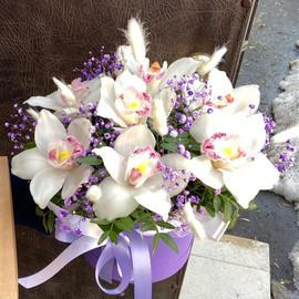 Цветы в коробке «Нежность орхидеи»