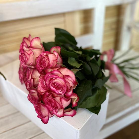 Роза Свитнес