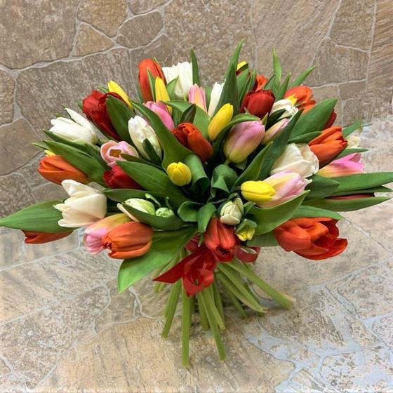 Тюльпаны 51 шт (БК - 20029)