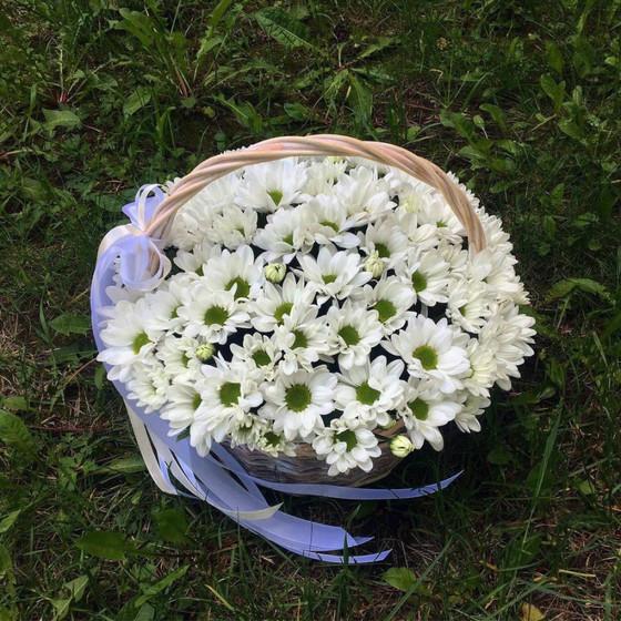 Корзинка с белой хризантемой