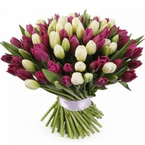 букет из тюльпанов  белых и фиолетовых